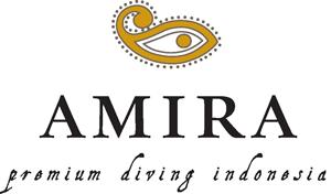 Amira